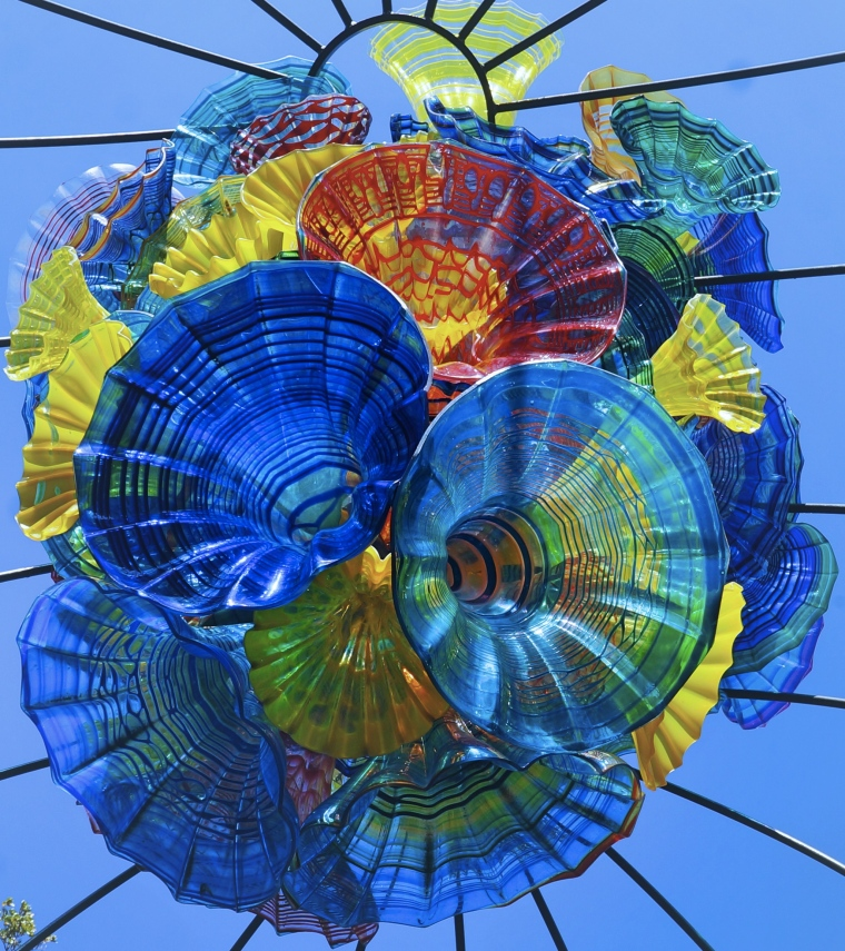 Art by Dale Chihuly • Image by Lynn Buckler Walsh | The Black Lion Journal | The Black Lion | Black Lion