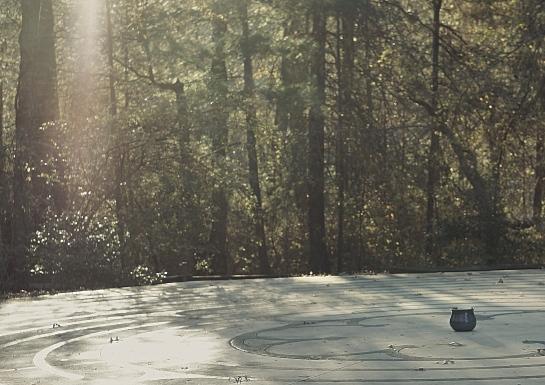 Lake Kanuga in North Carolina at Patti Digh's Life is a Verb Camp | Image by Lynn Buckler Walsh | The Black Lion Journal | The Black Lion | Black Lion