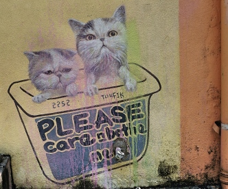 Penang street art 2 - Please care and bathe me